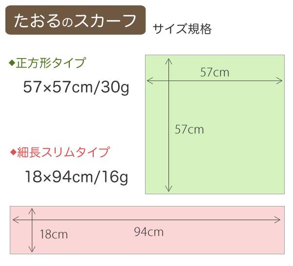 サイズ規格